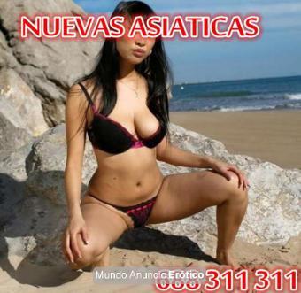 Fotos de NUEVAS ASIATICAS GUAPAS JOVENES MASAJES 24H EN GUADALAJARA 643679878 688311311